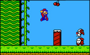 Play Super Mario Brothers 2